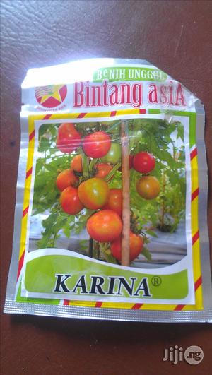 Tree Tomatoes From Thailand | Meals & Drinks for sale in Abuja (FCT) State, Kubwa