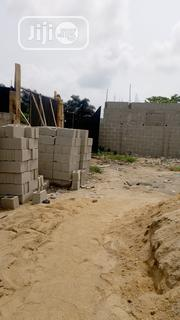 Plot of Land Besides Good News Estate Sangotedo With Cofo | Land & Plots For Sale for sale in Lagos State, Ajah