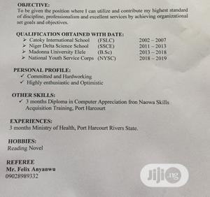 Health Care Cv   Healthcare & Nursing CVs for sale in Rivers State, Port-Harcourt