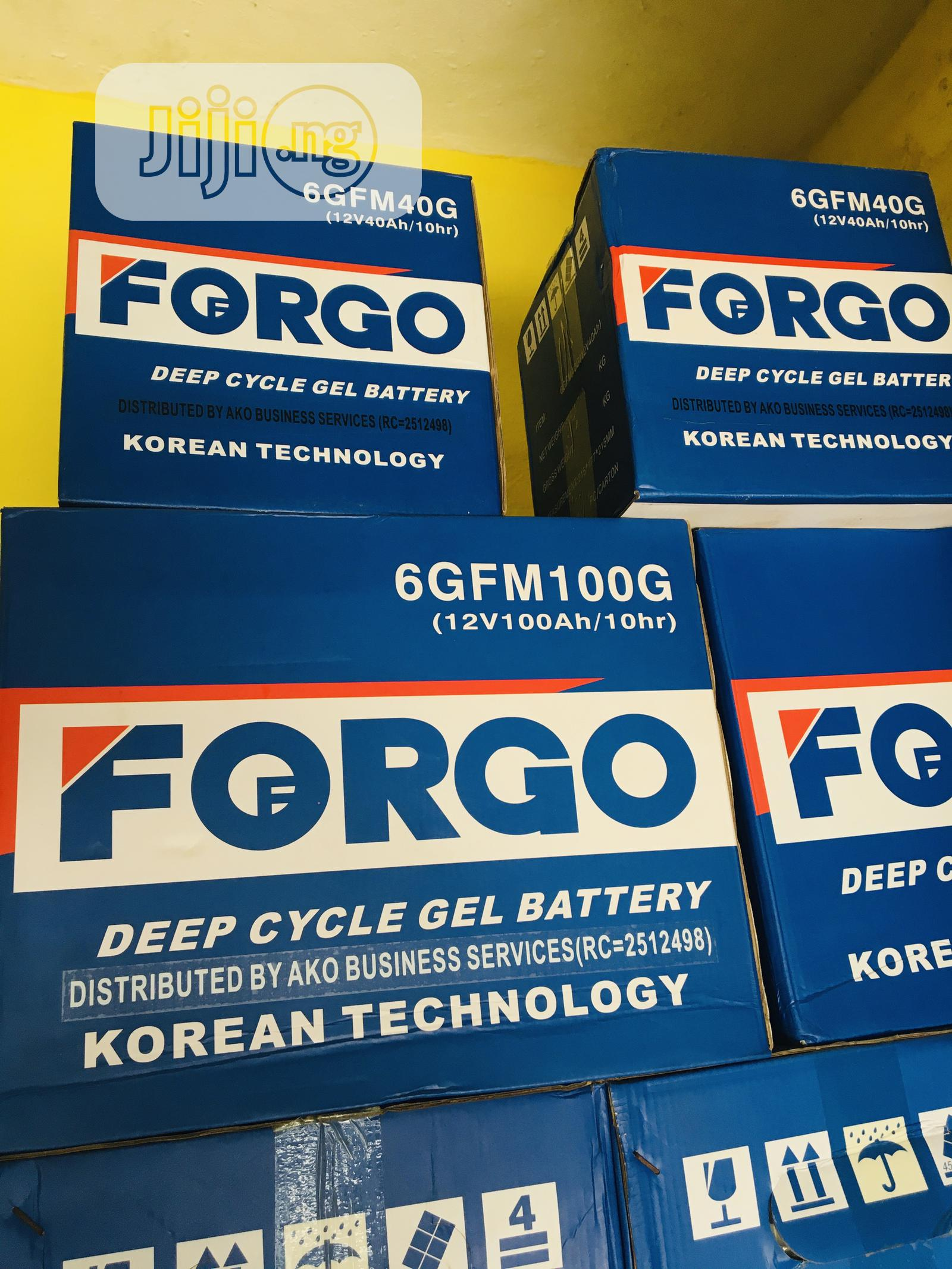 100ah Forgo Battery Available With 1yr Warranty