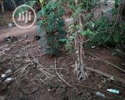 Plot Of Land For Sale At A Developed Area Of Ayobo | Land & Plots For Sale for sale in Lagos State, Alimosho