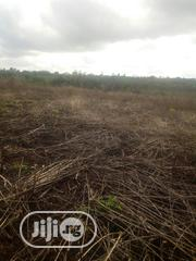 An Acre For Sale With Stream Beside It, 400 Acres In Total | Land & Plots For Sale for sale in Ogun State, Abeokuta North