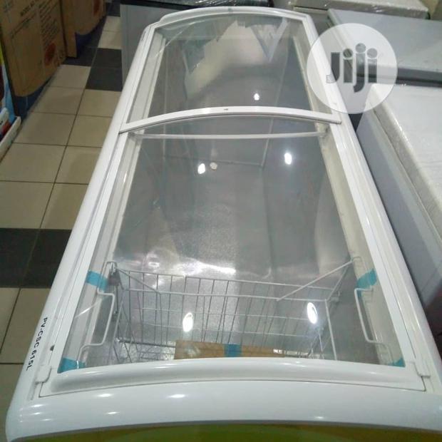 Polystar 615liters Double Door Ice Cream Freezer