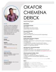 Internship CV | Internship CVs for sale in Lagos State, Lagos Island