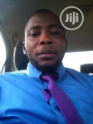 Sales Manager   Advertising & Marketing CVs for sale in Kano State, Tarauni