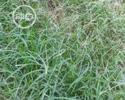 Land At Olokonla Ajah Lagos For Sale | Land & Plots For Sale for sale in Lagos State, Ajah