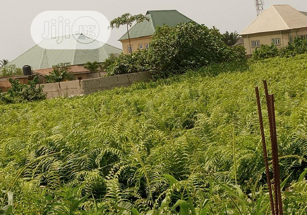 Archive: For SALE: One(1) Acre of Land Near Iba Low Cost Housing Estate Lagos
