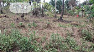 4 Plots of Land for Sale, Virgin Land | Land & Plots For Sale for sale in Abia State, Ugwunagbo