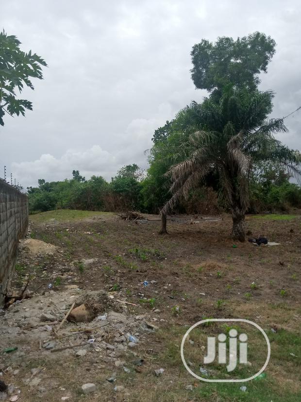 Archive: Affordable Lands for Sale in Lekki