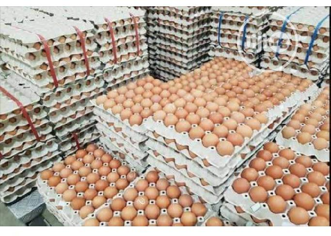 Table Eggs | Meals & Drinks for sale in Ibadan, Oyo State, Nigeria