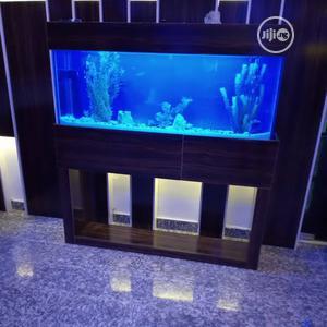 Aquarium Makers | Fish for sale in Lagos State, Ikorodu