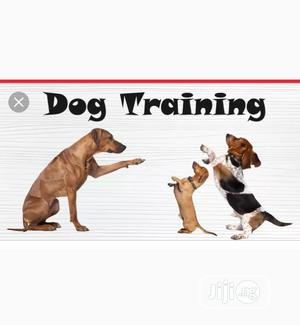 Professional Dog Trainer | Pet Services for sale in Lagos State, Badagry