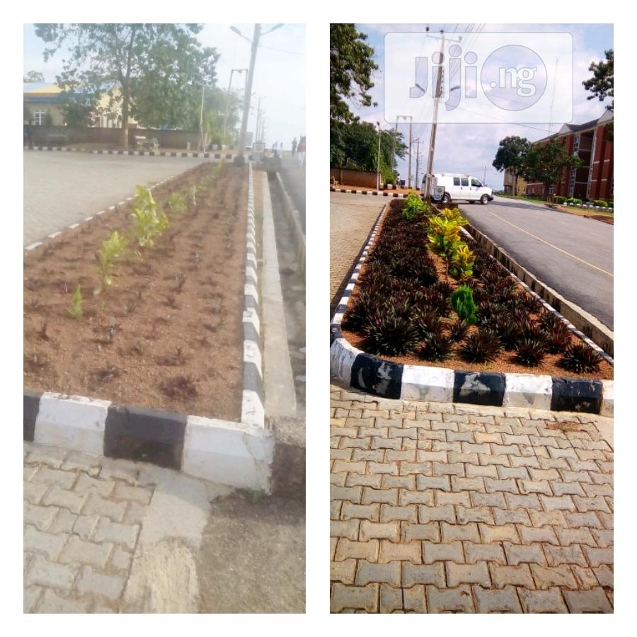 Archive: Success Flowers And Landscaping Services