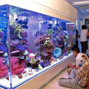 Massive Aquarium | Fish for sale in Lagos State, Ikoyi