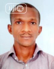Expert News Blooger/Web Designer | Computing & IT CVs for sale in Lagos State, Surulere