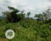 800m2-Corner Piece Land at Canal Estate, OKOTA Lagos.TITLE: Cofo. | Land & Plots For Sale for sale in Lagos State, Isolo