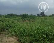 650m2-Land at BUCKNOR ESTATE, Isolo. TITLE: Cofo. For Sale | Land & Plots For Sale for sale in Lagos State, Isolo