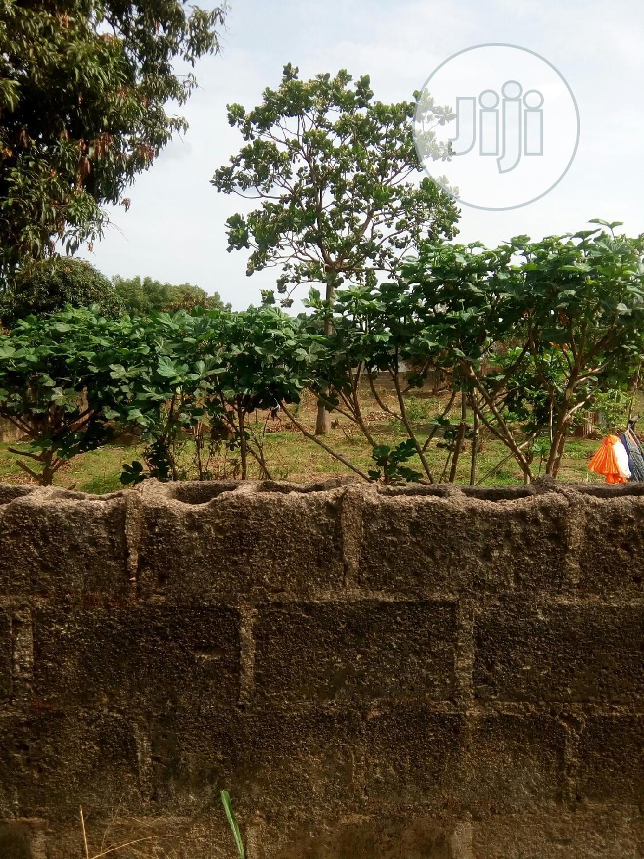 Genuien Plots of Lands Within Enugu Axis
