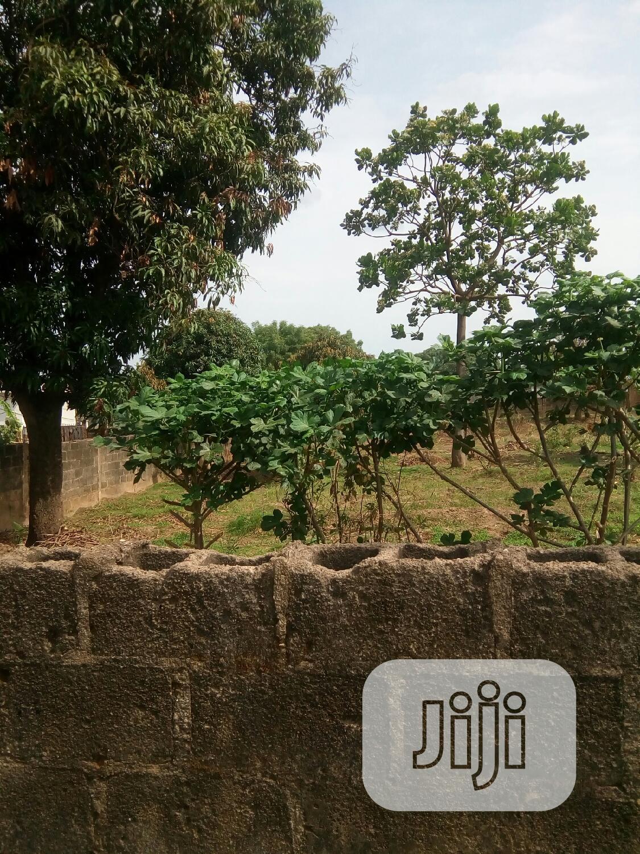 Genuien Plots of Lands Within Enugu Axis   Land & Plots For Sale for sale in Enugu, Enugu State, Nigeria