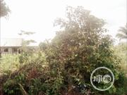 FOR SALE: 2 Plots Of Land At Eneka Estate, Eneka, Portharcourt   Land & Plots For Sale for sale in Rivers State, Port-Harcourt
