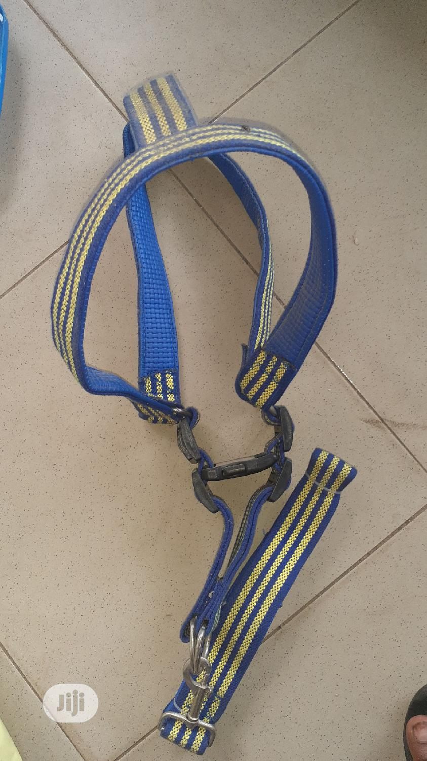 Dog Padded Harness   Pet's Accessories for sale in Egbe Idimu, Lagos State, Nigeria