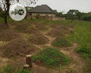 2 Plots of Land Within St. Benald Seminary Hostel, Nchatancha, Emene. | Land & Plots For Sale for sale in Enugu State, Nkanu East