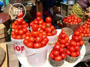 Fresh Tomatoes   Meals & Drinks for sale in Lagos State, Magodo
