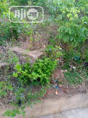 Lands Within Apete Suitable Hostels Resident Building and Other Purpos | Land & Plots For Sale for sale in Oyo State, Ibadan