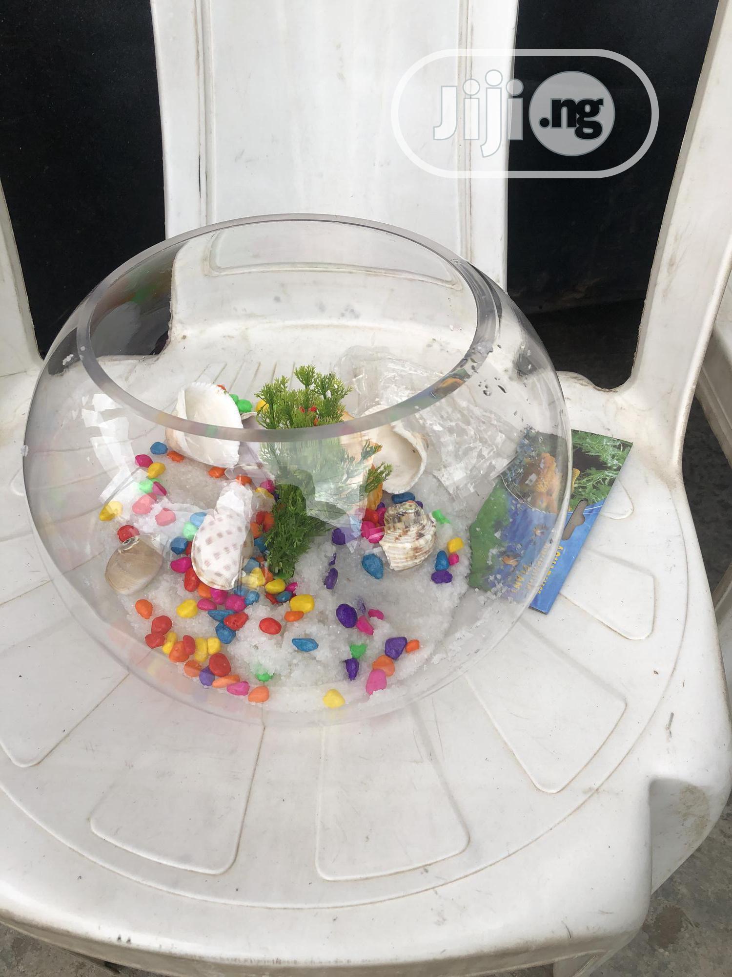 Aquarium Fish Bowl | Fish for sale in Ikoyi, Lagos State, Nigeria