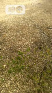 30 Hectares Farm Land Along Benin-ovia Expressway | Land & Plots For Sale for sale in Edo State, Ovia South