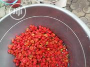 Fresh Pepper | Feeds, Supplements & Seeds for sale in Lagos State, Surulere