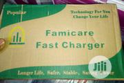 Famicare Solar Battery Charger 50ah | Solar Energy for sale in Lagos State, Ojo