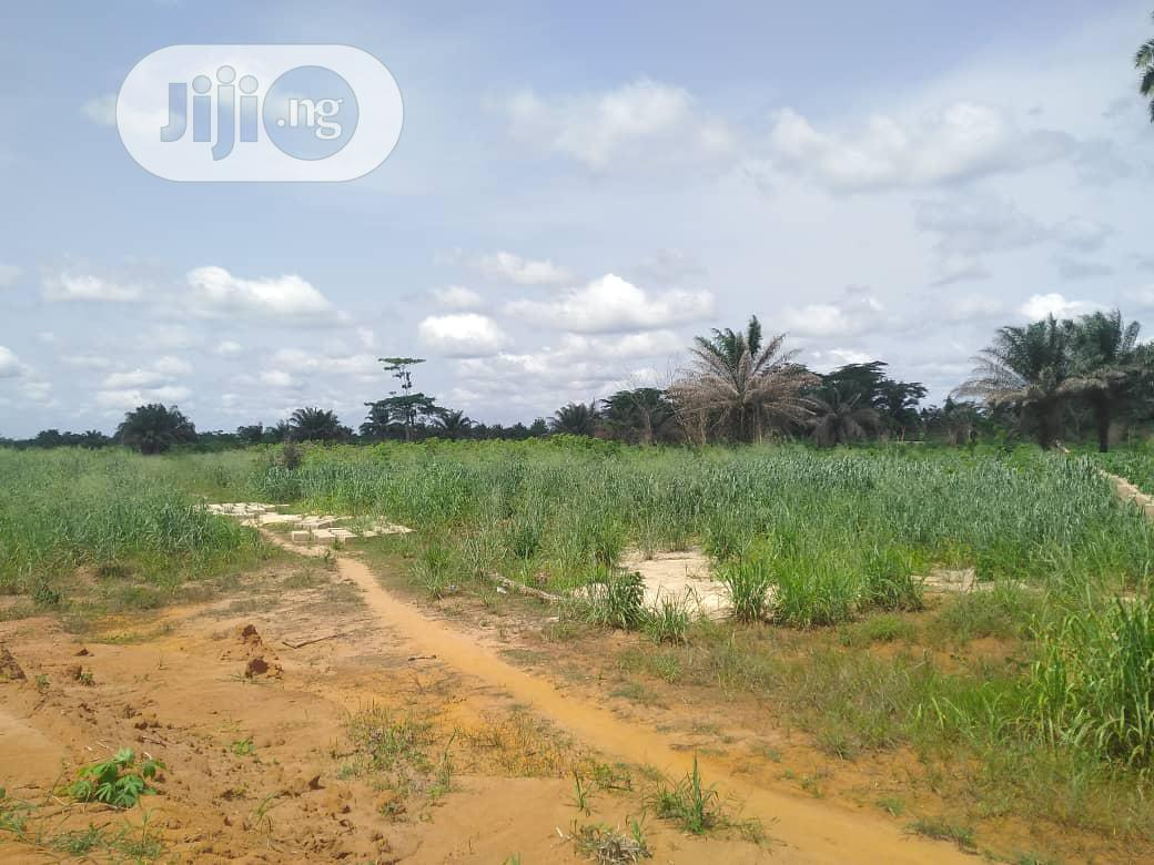 Buy Cheap Land in a Fast Developing Community Off Sapele Road Benin.