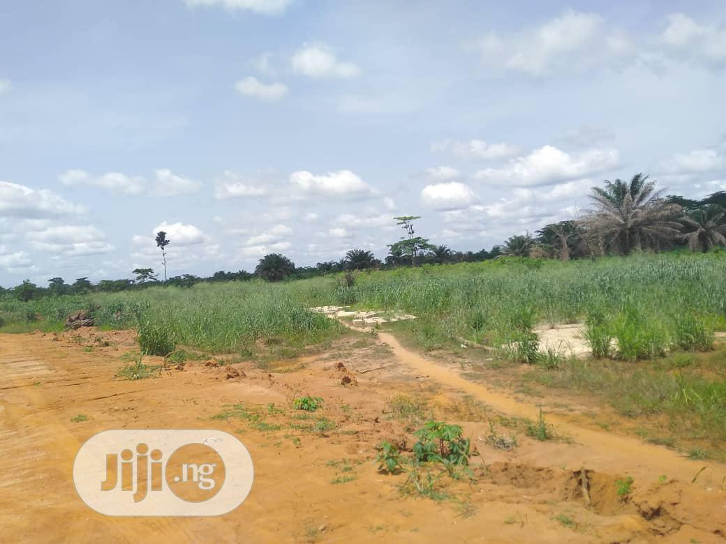 Buy Cheap Land in a Fast Developing Community Off Sapele Road Benin.   Land & Plots For Sale for sale in Benin City, Edo State, Nigeria