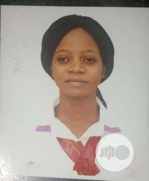 Healthcare Nursing CV | Healthcare & Nursing CVs for sale in Lagos State, Lekki