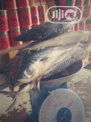 A Kilo Of Correct Titus Frozen Fish | Feeds, Supplements & Seeds for sale in Lagos State, Ojodu