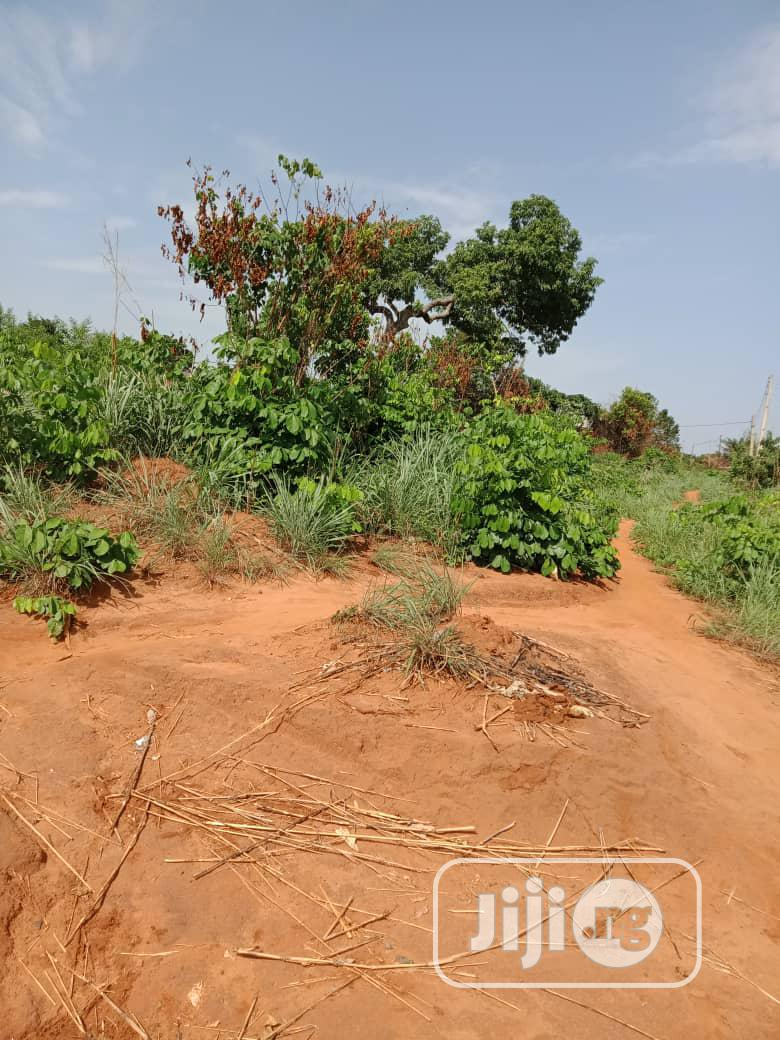 At Achalla OVER 50 PLOTS FOR SALE Melekh Olam Consultium