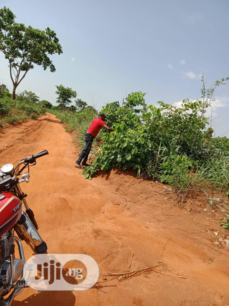 At Achalla OVER 50 PLOTS FOR SALE Melekh Olam Consultium | Land & Plots For Sale for sale in Awka, Anambra State, Nigeria
