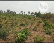 Own A Plot Of Land In Blossom Estates At Akinyele LGA, Moniya, Ibadan. | Land & Plots For Sale for sale in Oyo State, Akinyele