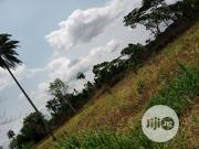 No 1 Obozogbe Village Ovia South West L. G. A Edo State | Land & Plots For Sale for sale in Edo State, Benin City