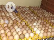 Fresh Eggs | Meals & Drinks for sale in Lagos State, Ikeja