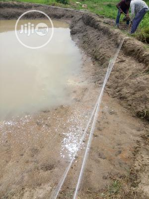 Catfish Earthen Pond For Rent. | Livestock & Poultry for sale in Abuja (FCT) State, Mpape