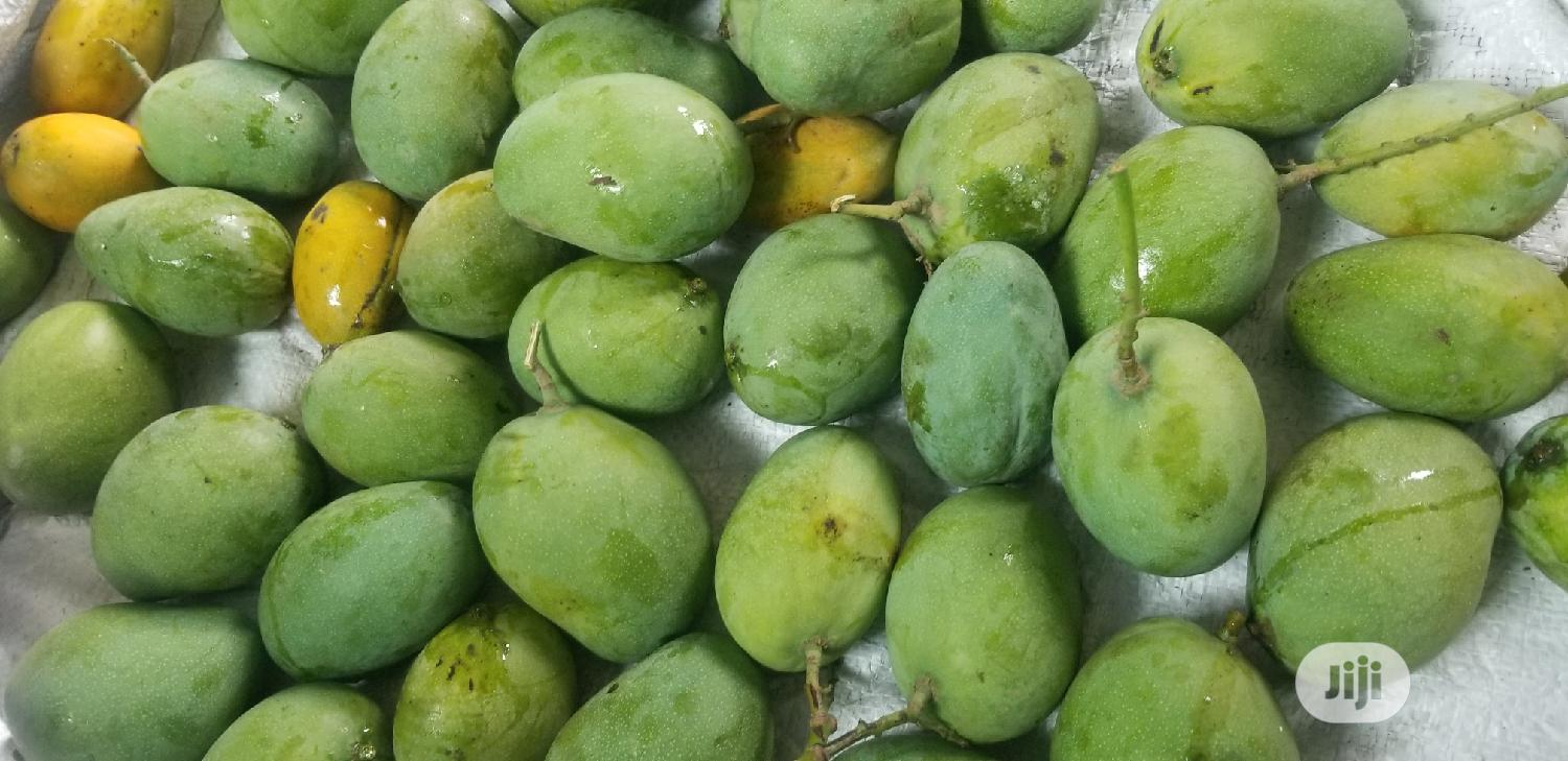 Fresh Mangoes. Pure Mango. Seri. Bulk Purchase. | Meals & Drinks for sale in Ikoyi, Lagos State, Nigeria