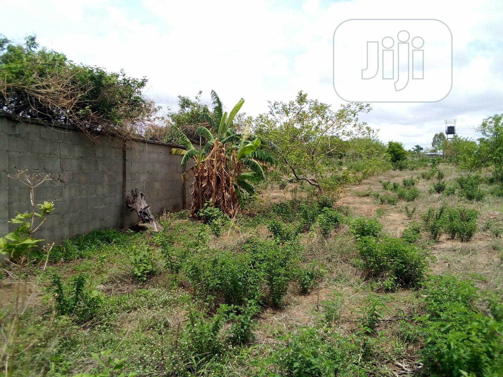 Archive: 15 Hectares Fenced Farmland Is Up For Lease Or Sale