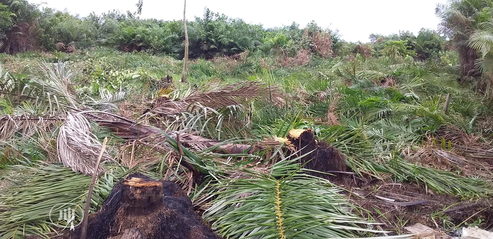 4 Plots of Land Going for 2.5 Million in Ibeju Lekki.