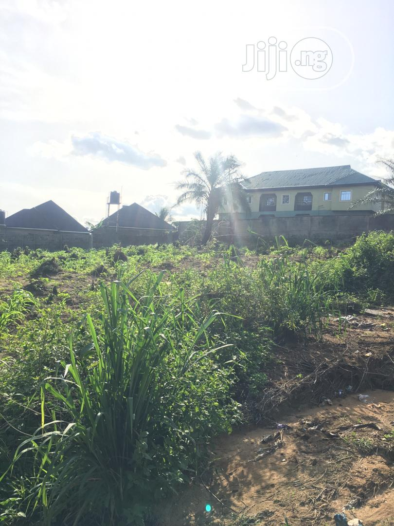 Genuine 2 Plots Of Land For Sale, In A Developing Area