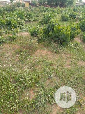 A Plots of Land at Mosoke-Lakoto,Ajibode UI Axis   Land & Plots For Sale for sale in Oyo State, Ibadan