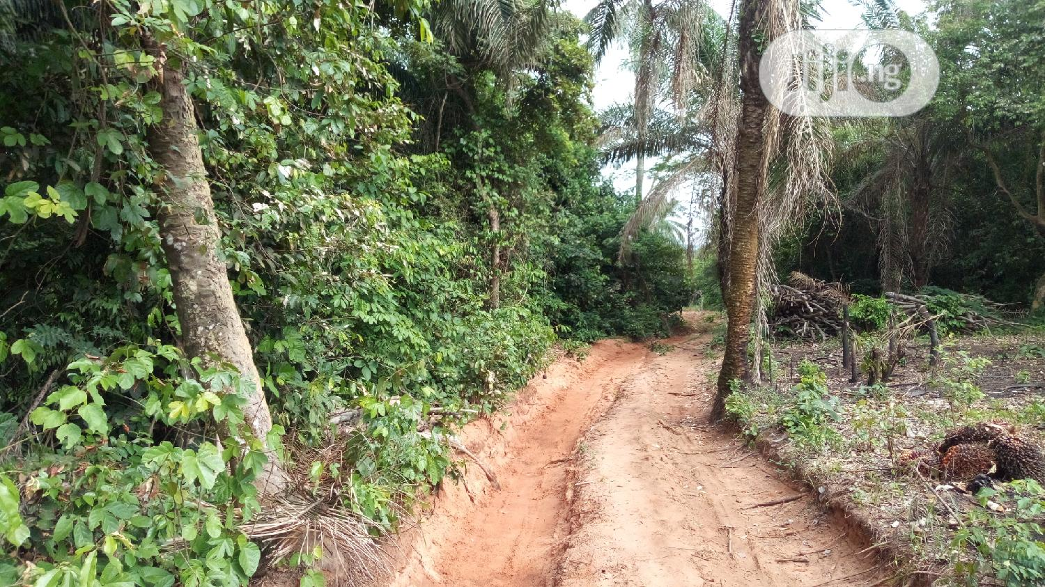 At UFUMA 400 Plots of Land for Sale Melekh Olam Consultium | Land & Plots For Sale for sale in Orumba, Anambra State, Nigeria