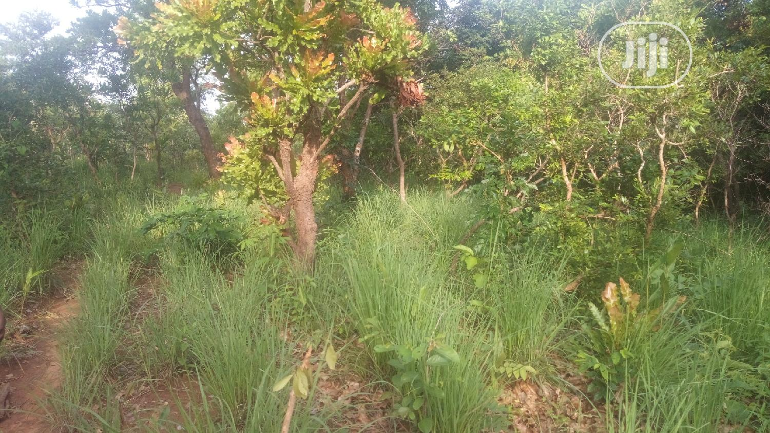 At Nawfija 80 Plots Melekh Olam Consultium   Land & Plots For Sale for sale in Orumba, Anambra State, Nigeria