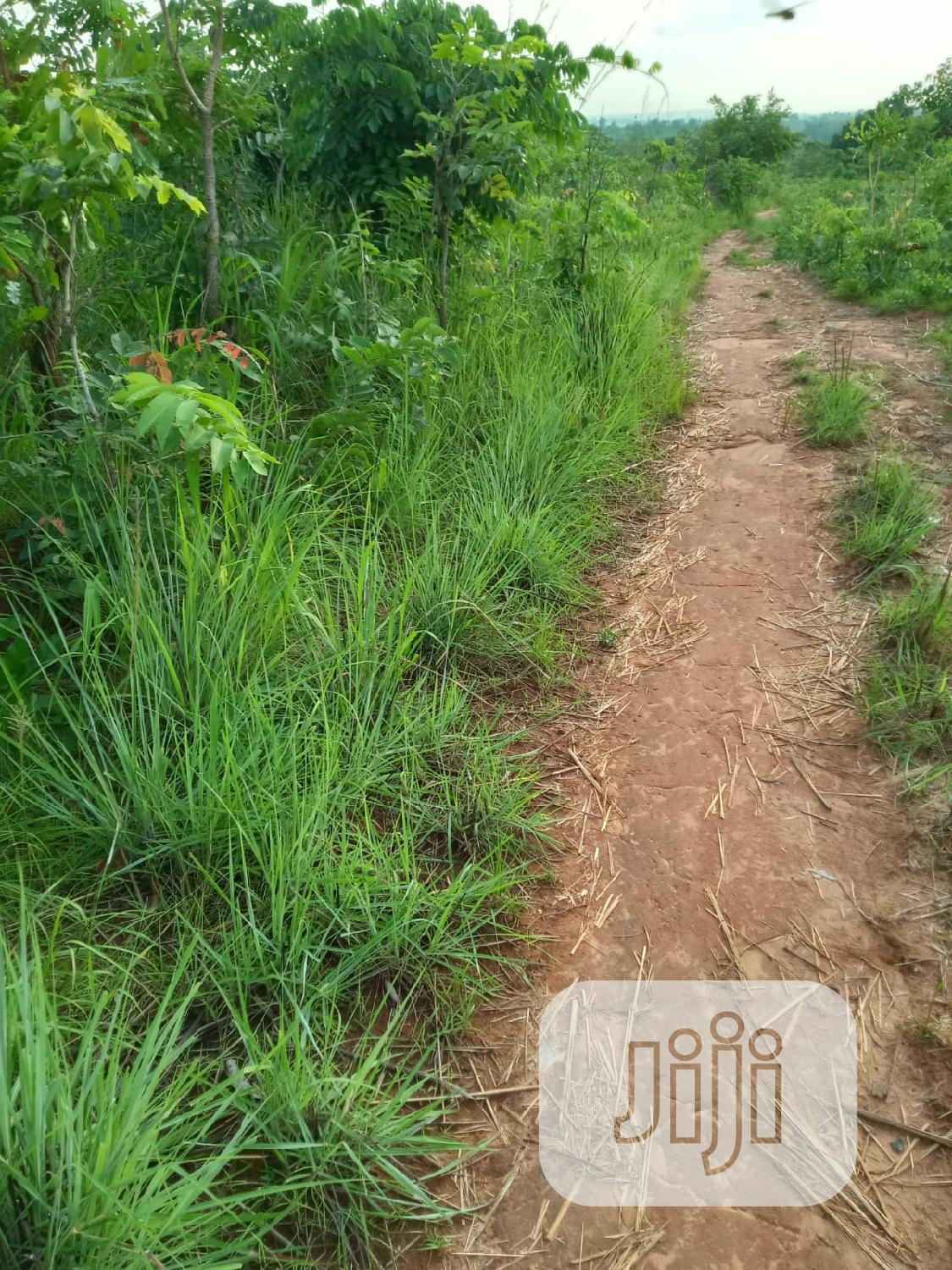 At Achalla Awka 200 Plots of Land for Sale Melekh Olam Consultium